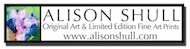 alisonshullart_logo_dropshadowonwhite_190x49